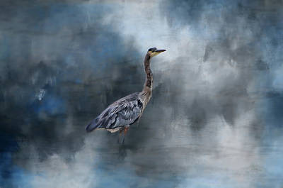 Photograph - Lone Blue Heron by Marilyn Wilson