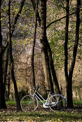 Photograph - Bicycle Park Autumn by Deimagine