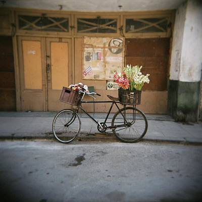 Photograph - Bicycle With Flowers In Basket, Havana by Lee Frost / Robertharding