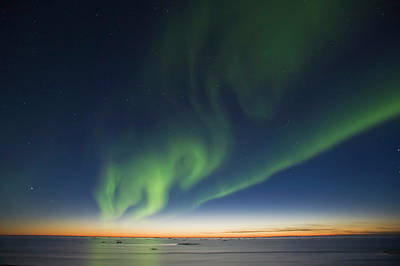 Photograph - Big Dipper And Green Aurora Borealis by Danita Delimont