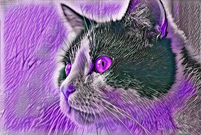 Recently Sold - Animals Digital Art - Big Head Tuxedo Cat Purple Eyes by Don Northup