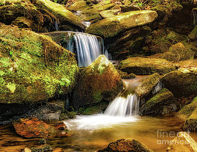 Photograph - Big Rock Cascades by Nick Zelinsky