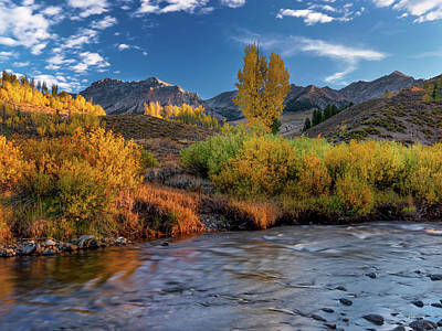 Photograph - Big Wood River Color by Leland D Howard
