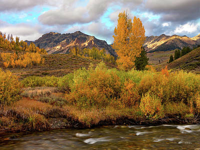 Photograph - Big Wood River Yellow by Leland D Howard