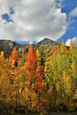 Photograph - Billowing Clouds And Beautiful Aspens At Red Mountain Pass by Ray Mathis