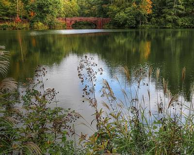 Photograph - Biltmore Bass Pond by Carol Montoya