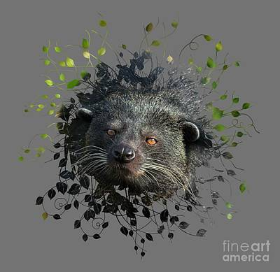 Beer Blueprints - Binturong Looking Trough The Leaves by Rawshutterbug