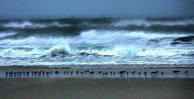 Painting - Bird Line In The Surf Line Ap by Dan Carmichael