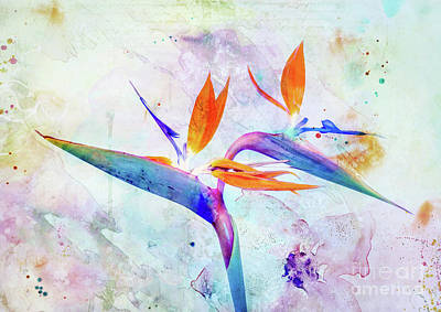 Mixed Media Royalty Free Images - Bird of Paradise Flower Royalty-Free Image by Jacky Gerritsen