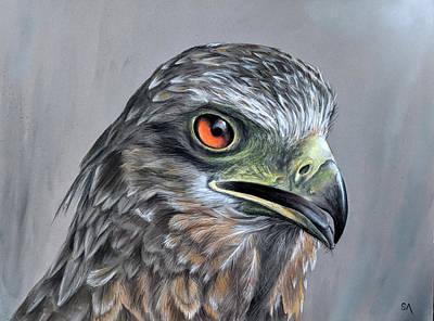 Painting - Bird of Prey II by Sean Afford