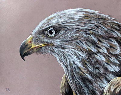 Painting - Bird of Prey by Sean Afford