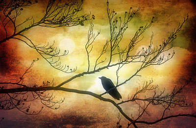 Photograph - Bird On Autumn Branches by Garry Gay