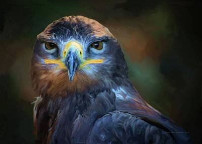 Digital Art - Birds - Lord Of Sky by Sipo Liimatainen