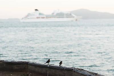 Womens Empowerment - Birds wating for the ferry by Esteban Martinena Guerrero
