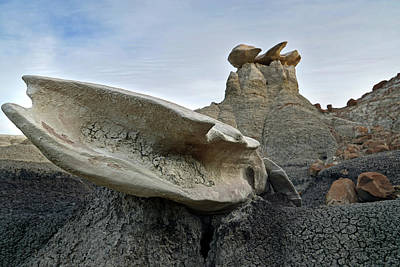 Photograph - Bisti Wings 04 by Jeff Brunton