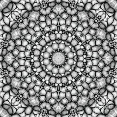 Digital Art - Black And White Circular Pattern by Phil Perkins