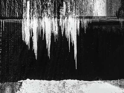 Photograph - Black And White Icicles by Phil Perkins