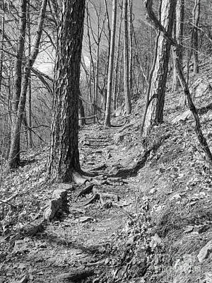Photograph - Black And White Mountain Trail by Phil Perkins