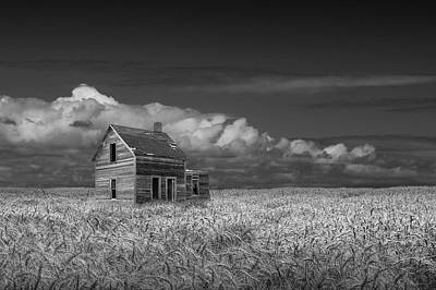 Photograph - Black And White Of An Old Abandoned Prairie Farm House In A Whea by Randall Nyhof