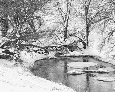 Photograph - Black And White Winter 01 by Rob Graham