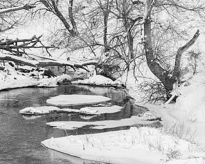 Photograph - Black And White Winter 02 by Rob Graham