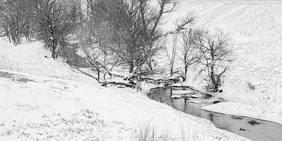 Photograph - Black And White Winter 03 by Rob Graham
