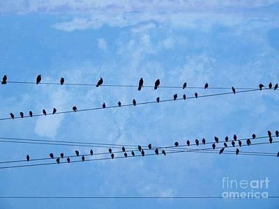 Graduation Sayings - Black Birds on Crossed Wires by Ella Kaye Dickey