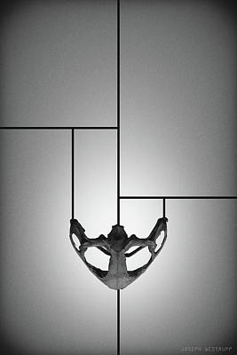 Photograph - Black Chalice - Abstract Geometric Bone Art by Joseph Westrupp