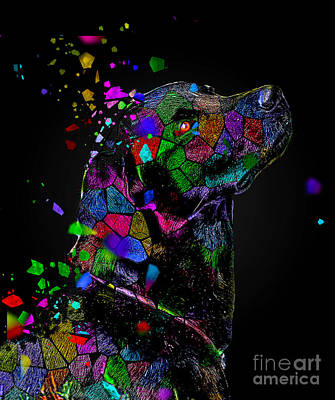 Digital Art - Black Dogs Matter by Kathy Kelly