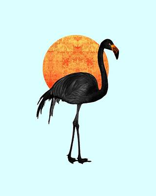 Royalty-Free and Rights-Managed Images - Black Flamingo 3 - Tropical Wall Decor - Flamingo Posters - Exotic Birds - Black, Modern, Minimal  by Studio Grafiikka