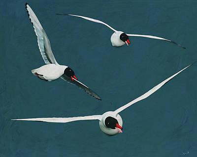 Michael Jackson - Black Headed Seagulls with Open Wings by Jan Keteleer