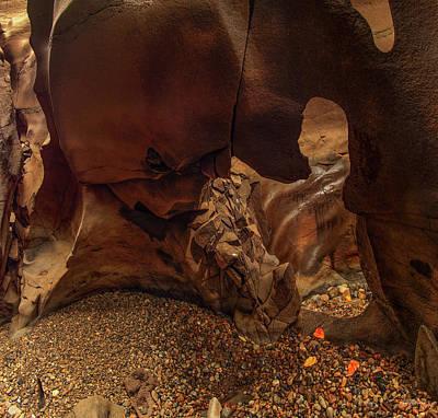 Photograph - Black Magic Canyon Form by Leland D Howard