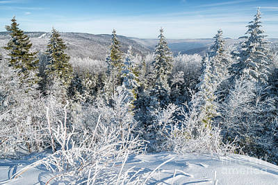 Photograph - Black Mountain In January by Thomas R Fletcher