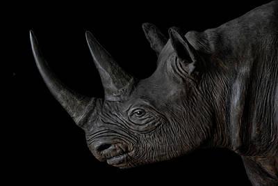 Animals Royalty-Free and Rights-Managed Images - Black Rhino by Joachim G Pinkawa