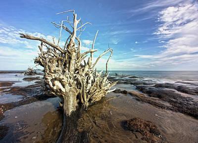 Photograph - Black Rock Find by Robert Och