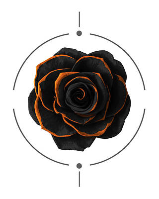 Modern Mixed Media - Black Rose - Black And Gold Rose - Death - Minimal Black And Gold Decor - Dark by Studio Grafiikka