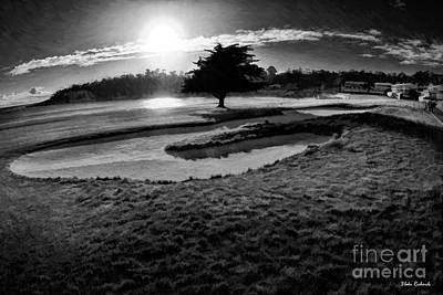 Photograph - Black Tree Pebble Beach 18th Hole by Blake Richards