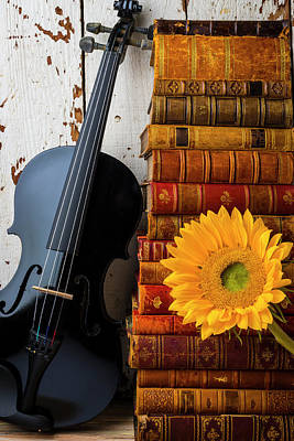 Photograph - Black Violin And Stack Of Books by Garry Gay
