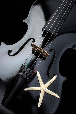 Photograph - Black Violin And Starfish by Garry Gay