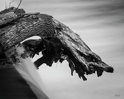 Photograph - Blackstone River X Bw by David Gordon