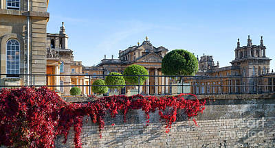 Photograph - Blenheim Palace In Autumn by Tim Gainey