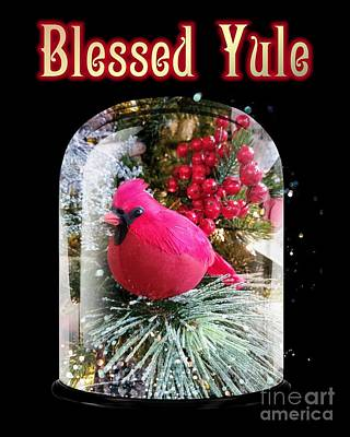 Photograph - Blessed Yule by Rachel Hannah