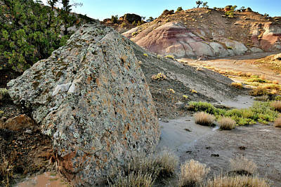 Photograph - Blm Bentonite Site On Little Park Road by Ray Mathis