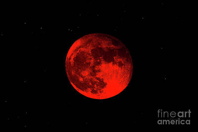 Photograph - Blood Red Wolf Supermoon Eclipse 873a by Ricardos Creations