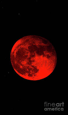 Photograph - Blood Red Wolf Supermoon Eclipse Series 873dr by Ricardos Creations