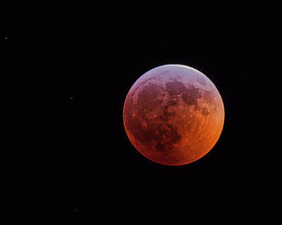 Photograph - Bloodmoon - Jan. 2019 by Steven Ralser