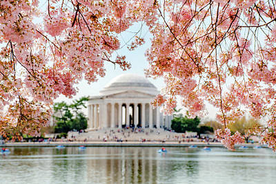 Featured Tapestry Designs - Blossoms over Jefferson by Greg Fortier