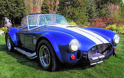 Photograph - Blue 427 Shelby Cobra In The Garden by David King