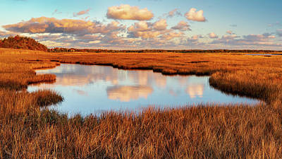 Photograph - Blue And Gold - Panorama by Michael Blanchette
