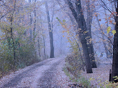 Photograph - Blue Autumn by Wild Thing